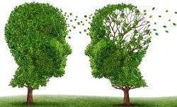 Sostegno familiari dei malati di Alzheimer Mantova